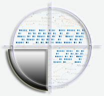 Spanish Spy directory. Branding, Website, Payments. Murcia, Spain..